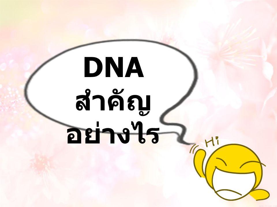 DNA สำคัญ อย่างไร