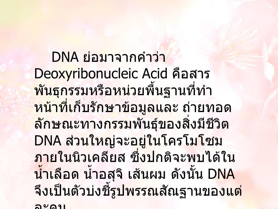 DNA ย่อมาจากคำว่า Deoxyribonucleic Acid คือสาร พันธุกรรมหรือหน่วยพื้นฐานที่ทำ หน้าที่เก็บรักษาข้อมูลและ ถ่ายทอด ลักษณะทางกรรมพันธุ์ของสิ่งมีชีวิต DNA