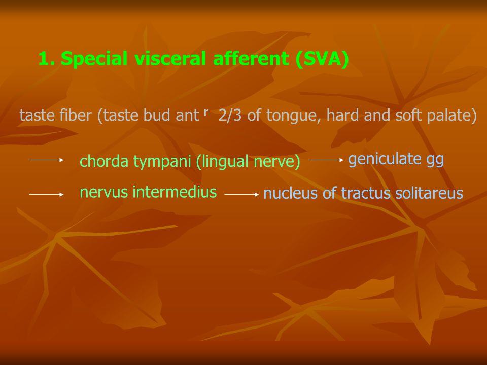 taste fiber (taste bud ant r 2/3 of tongue, hard and soft palate) chorda tympani (lingual nerve) geniculate gg nervus intermedius nucleus of tractus s