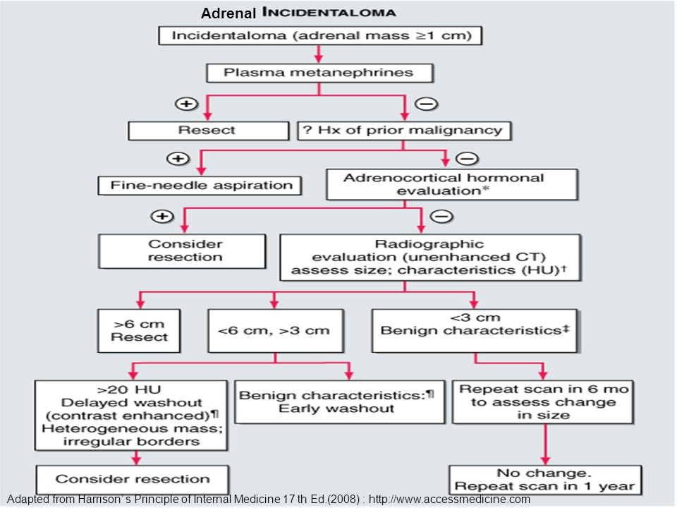 Adapted from Harrison' s Principle of Internal Medicine 17 th Ed.(2008) : http://www.accessmedicine.com Adrenal