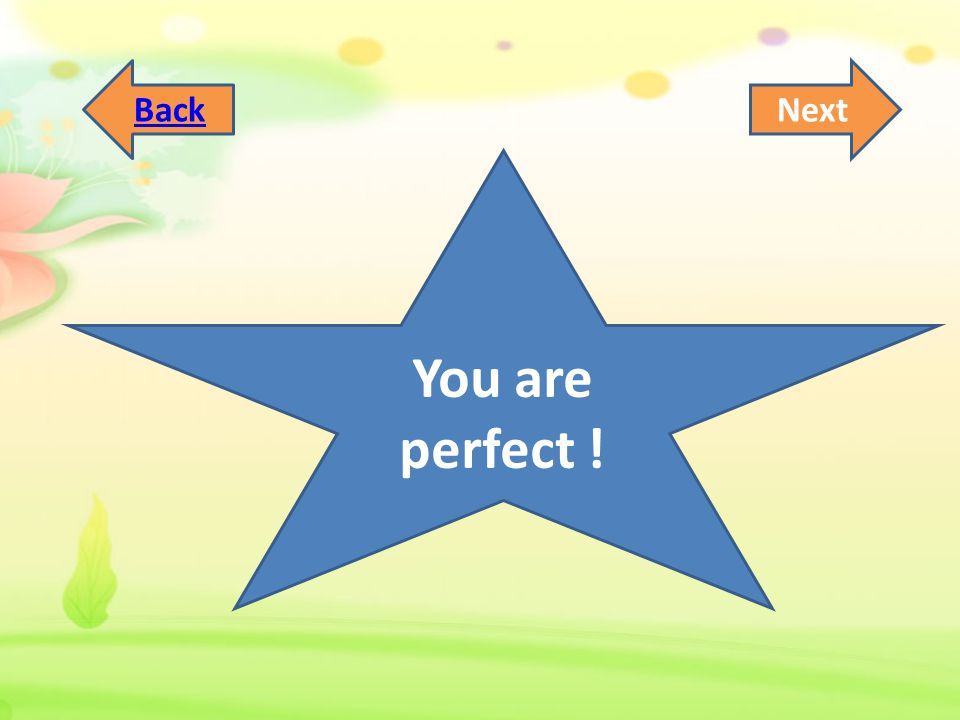 You are perfect ! NextBack