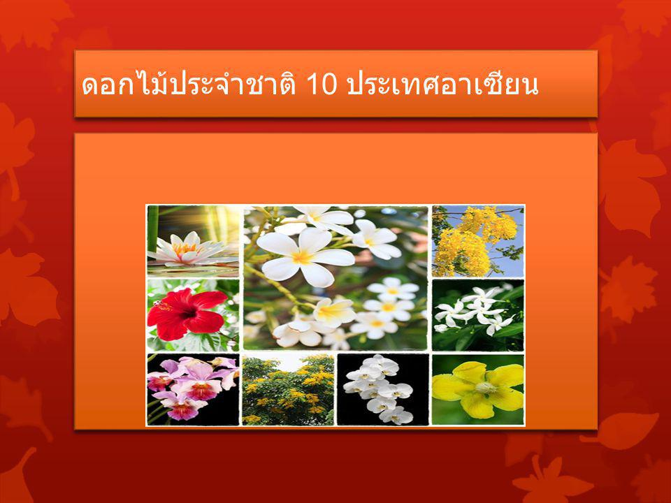 ดอกไม้ประจำชาติ 10 ประเทศอาเซียน