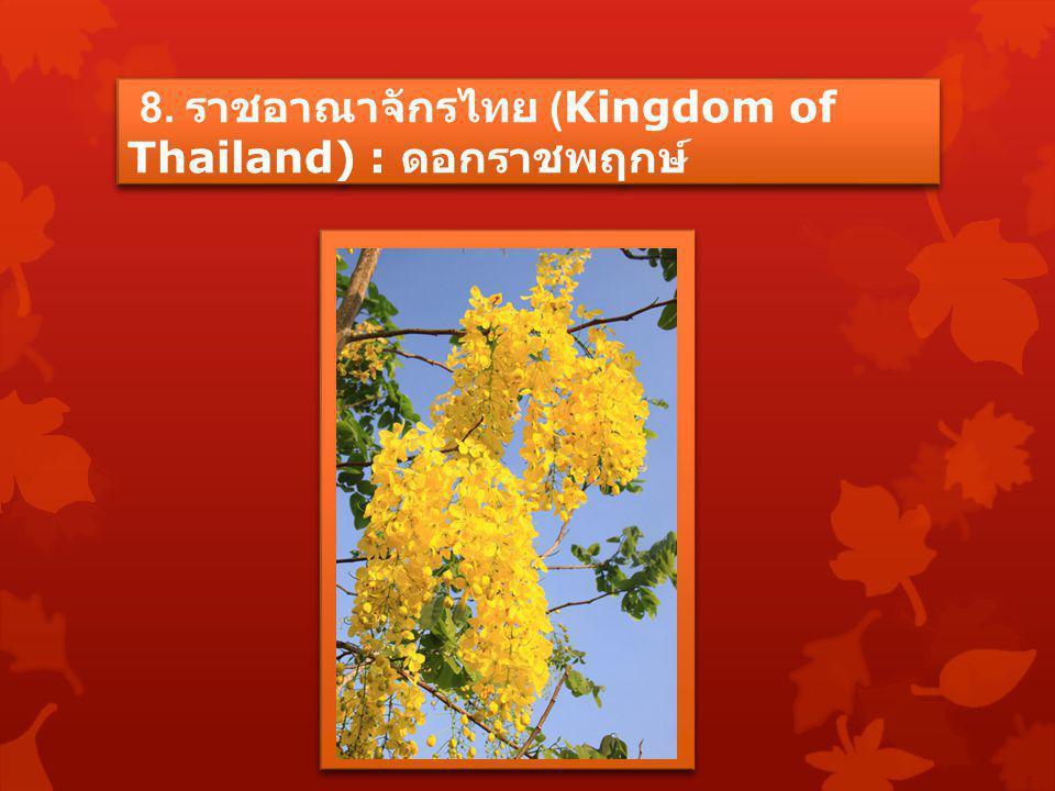 8. ราชอาณาจักรไทย (Kingdom of Thailand) : ดอกราชพฤกษ์