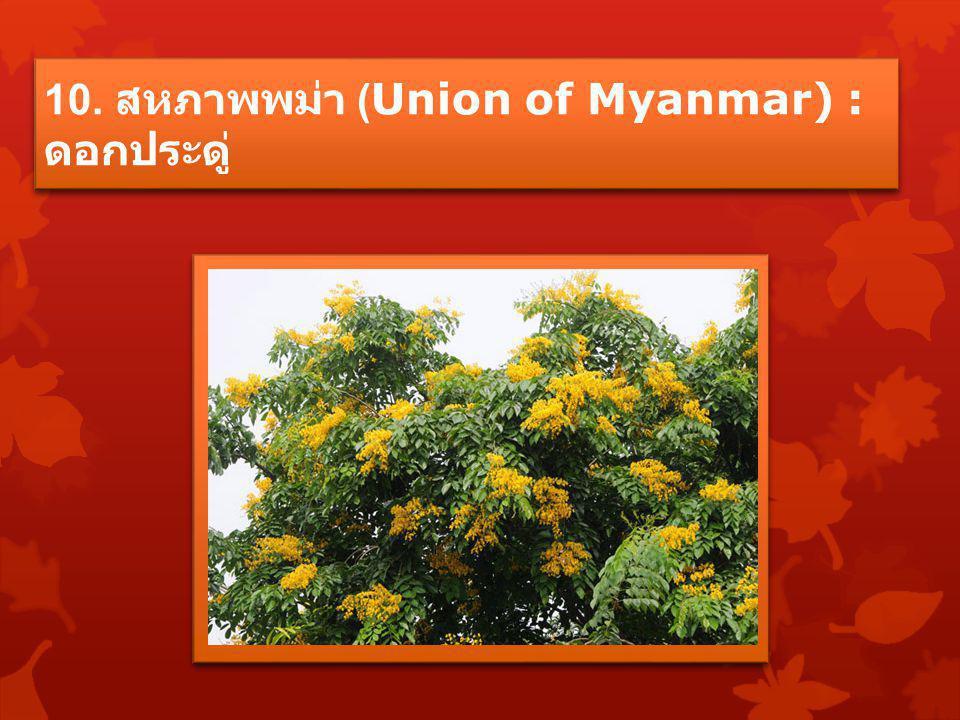 10. สหภาพพม่า (Union of Myanmar) : ดอกประดู่