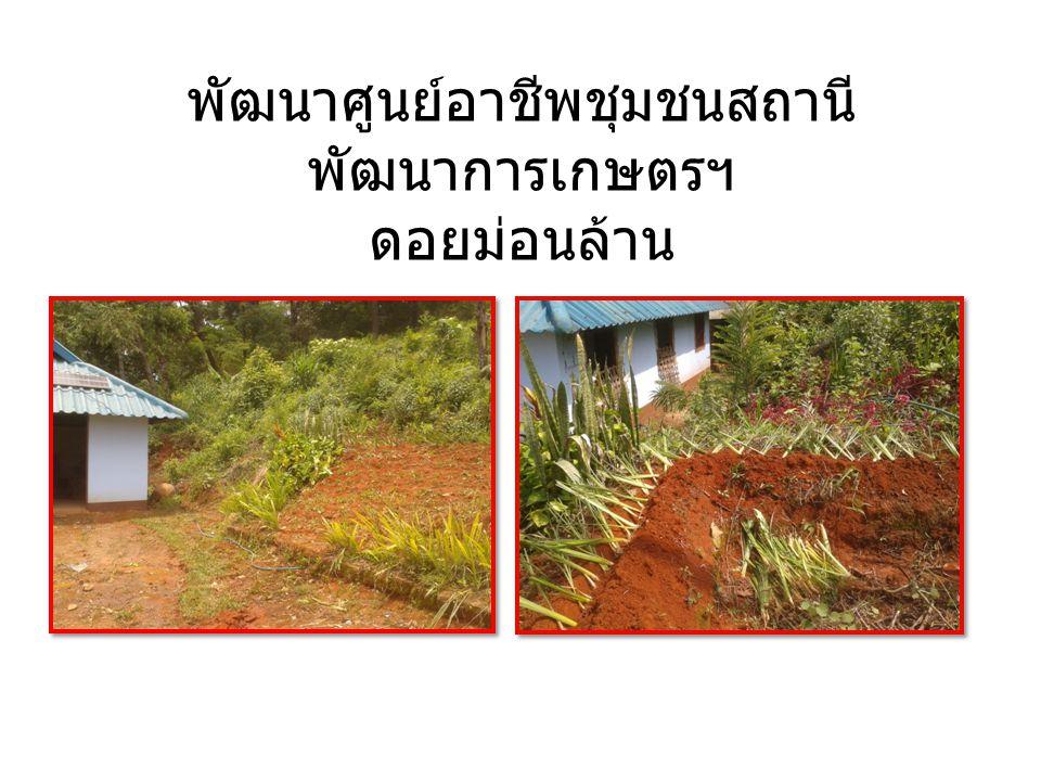 พัฒนาศูนย์อาชีพชุมชนสถานี พัฒนาการเกษตรฯ ดอยม่อนล้าน