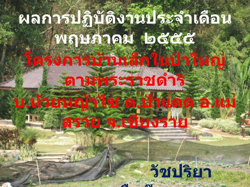 ผลการปฏิบัติงานประจำเดือน พฤษภาคม ๒๕๕๕ โครงการบ้านเล็กในป่าใหญ่ ตามพระราชดำริ บ. ห้วยหญ้าไซ ต. ป่าแดด อ. แม่ สรวย จ. เชียงราย วัชปริยา ยืนอ๊อด ครูอาสา
