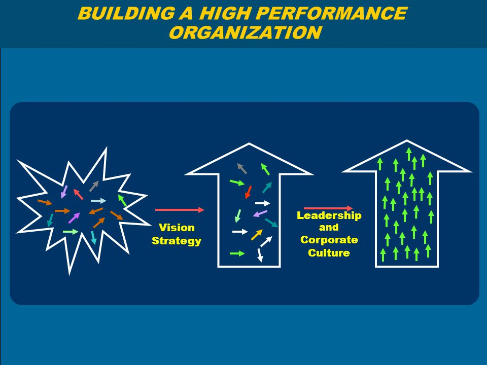 BUILDING A HIGH PERFORMANCE ORGANIZATION Vision Strategy Leadership and Corporate Culture