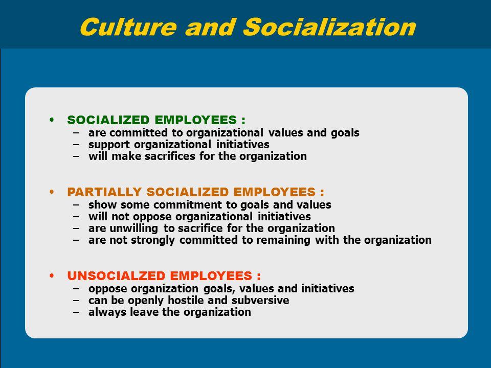 Culture and Socialization SOCIALIZED EMPLOYEES : –are committed to organizational values and goals –support organizational initiatives –will make sacr