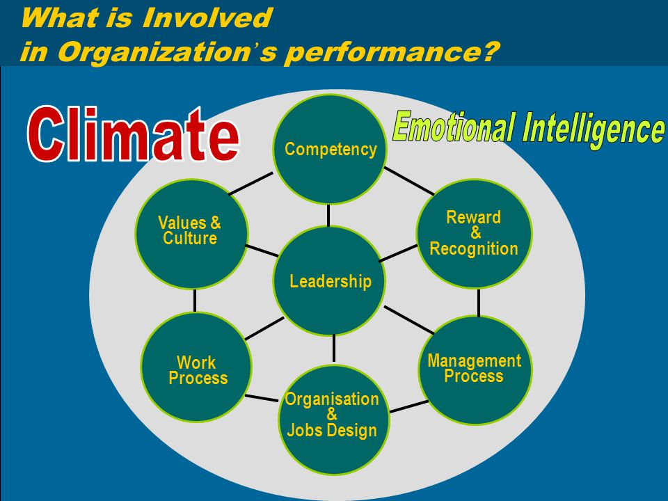 What is Involved in Organization ' s performance? Competency Values & Culture Reward & Recognition Leadership Work Process Organisation & Jobs Design