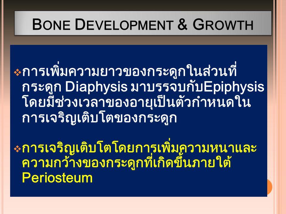 B ONE D EVELOPMENT & G ROWTH  การเพิ่มความยาวของกระดูกในส่วนที่ กระดูก Diaphysis มาบรรจบกับEpiphysis โดยมีช่วงเวลาของอายุเป็นตัวกำหนดใน การเจริญเติบโ