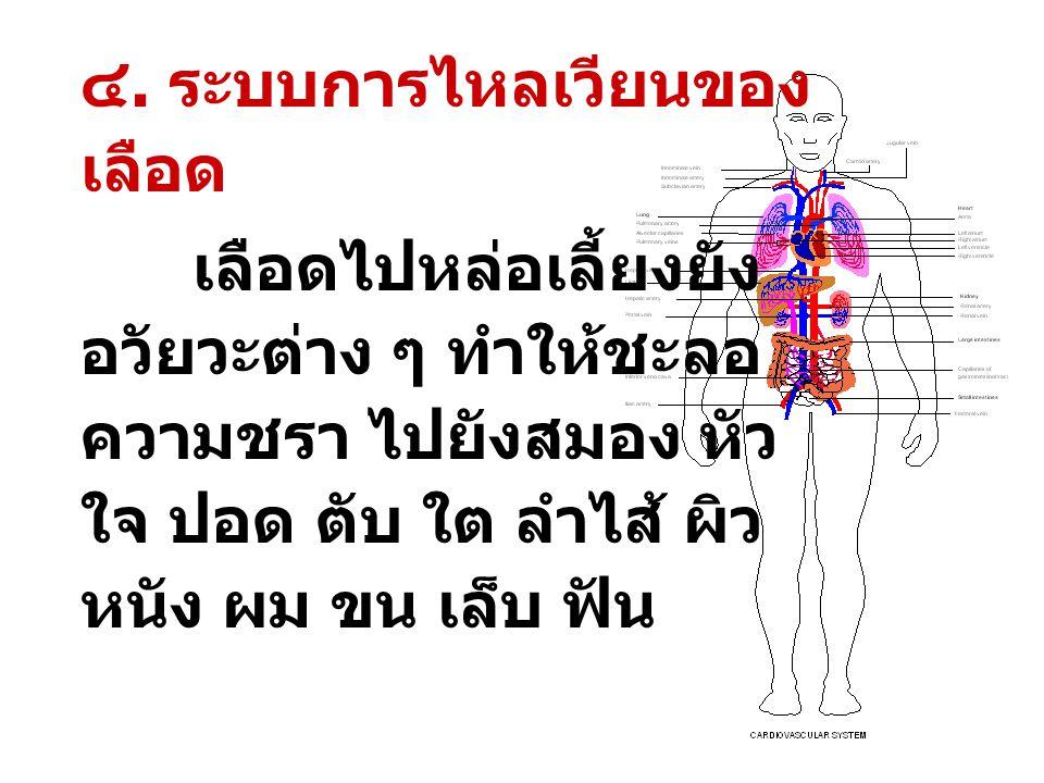 8 ๓. ระบบการ ทรงตัว ฝึกการ ตอบสนอง ของอวัยวะการ ทรงตัวที่ หูฝึกประสาน การทำงาน ของอวัยวะต่าง ๆ เพื่อ การทรงตัว