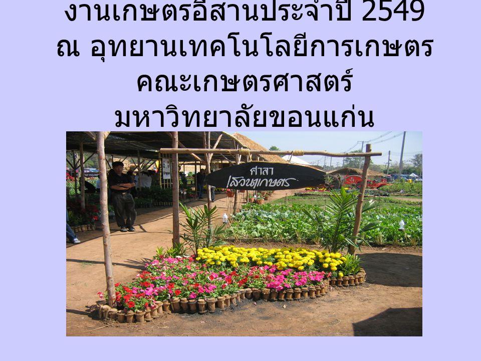 งานเกษตรอีสานประจำปี 2549 ณ อุทยานเทคโนโลยีการเกษตร คณะเกษตรศาสตร์ มหาวิทยาลัยขอนแก่น