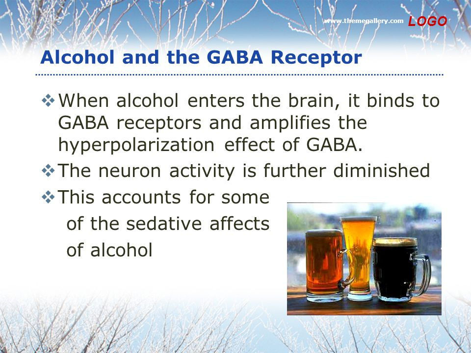 Alcohol and the GABA Receptor  When alcohol enters the brain, it binds to GABA receptors and amplifies the hyperpolarization effect of GABA.  The ne