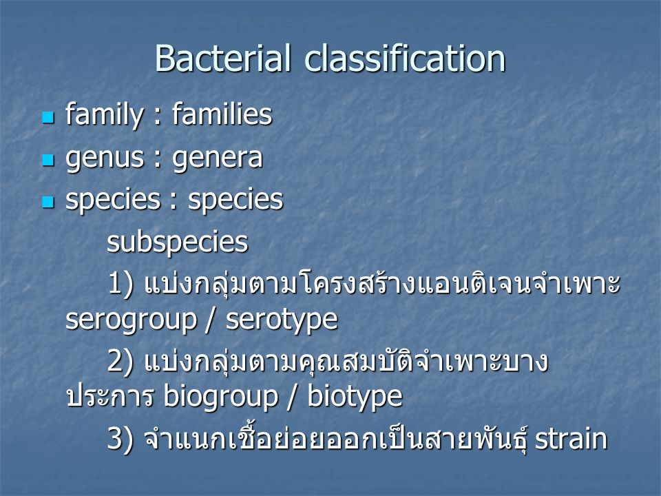 Bacterial classification family : families family : families genus : genera genus : genera species : species species : speciessubspecies 1) แบ่งกลุ่มต