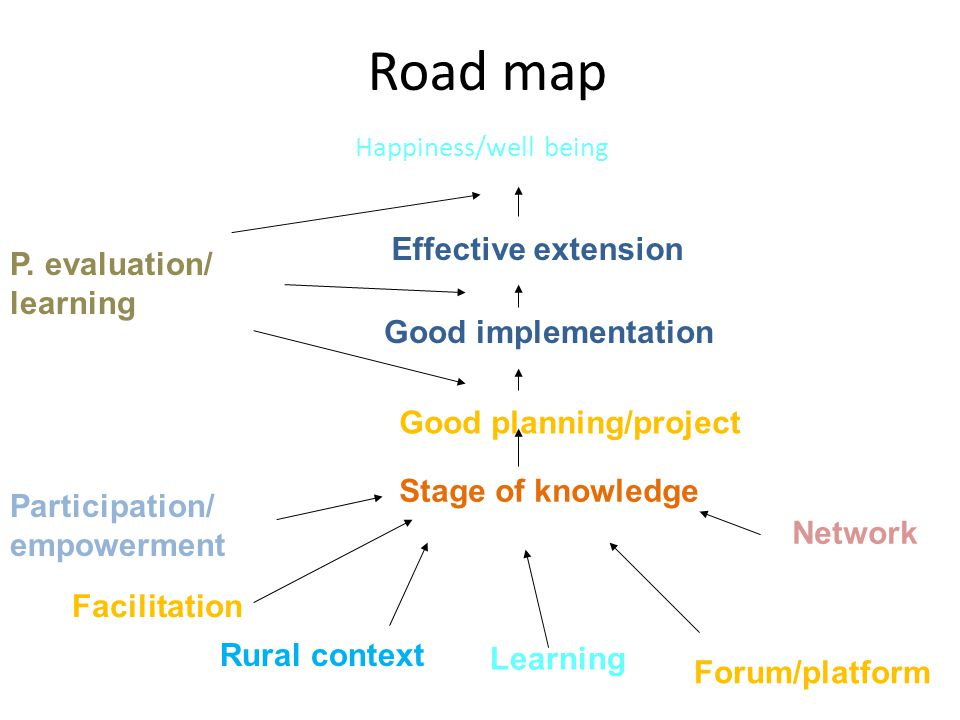Road map Happiness/well being Effective extension Good implementation Good planning/project Stage of knowledge Participation/ empowerment P. evaluatio