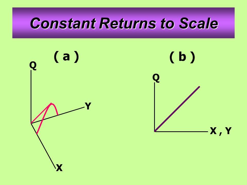 Constant Returns to Scale ( a ) ( b ) Q Y X Q X, Y