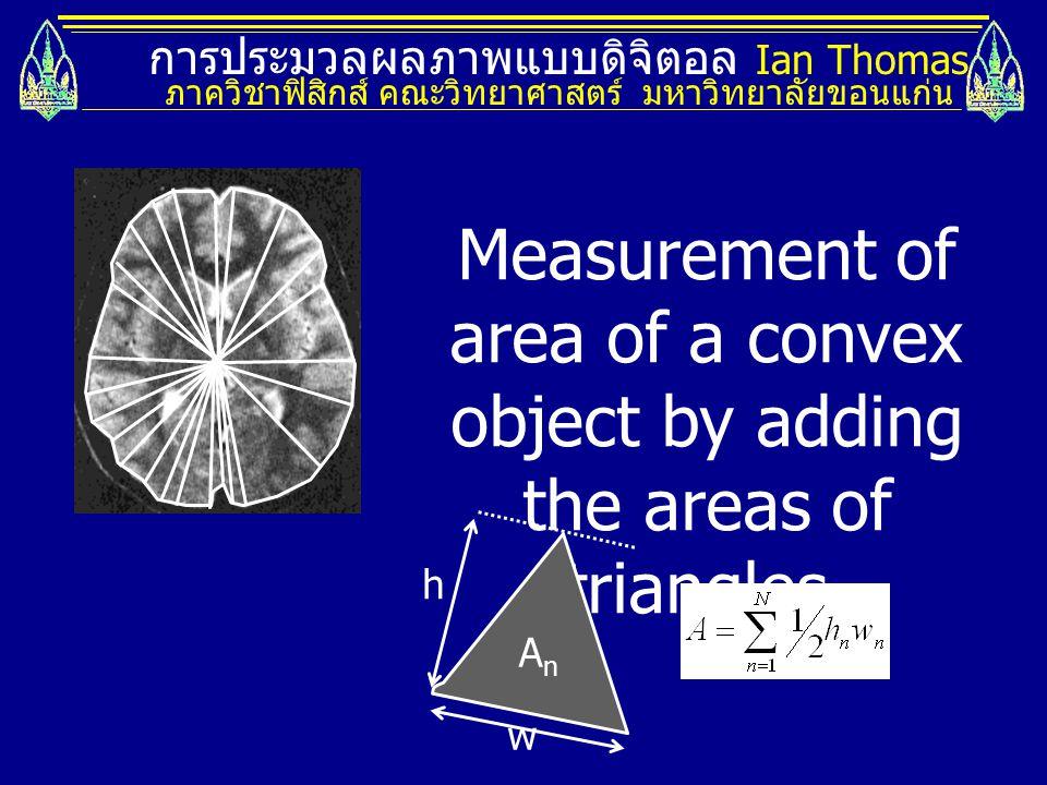 การประมวลผลภาพแบบดิจิตอล Ian Thomas ภาควิชาฟิสิกส์ คณะวิทยาศาสตร์ มหาวิทยาลัยขอนแก่น Measurement of area of a convex object by adding the areas of tri