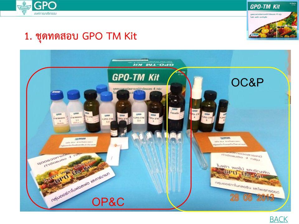 1. ชุดทดสอบ GPO TM Kit OP&C OC&P BACK