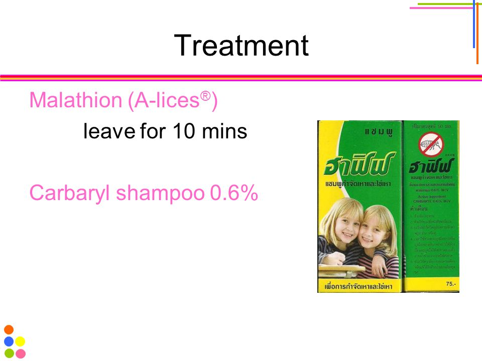 Treatment Malathion (A-lices ® ) leave for 10 mins Carbaryl shampoo 0.6%