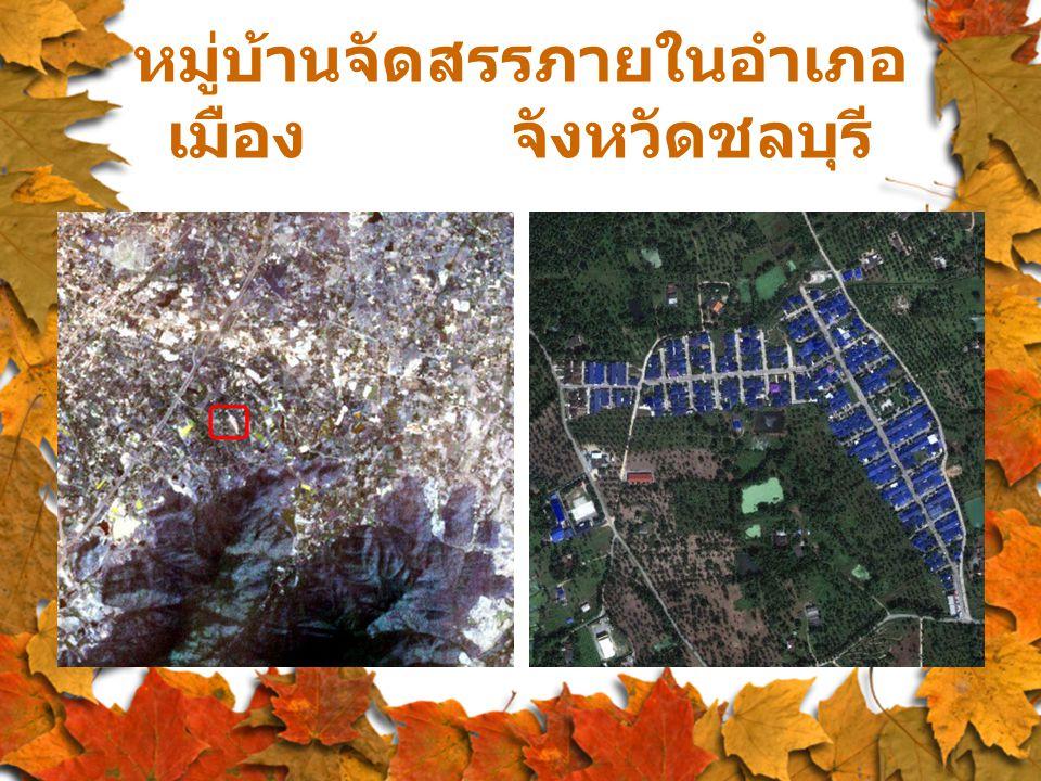 หมู่บ้านจัดสรรภายในอำเภอ เมือง จังหวัดชลบุรี