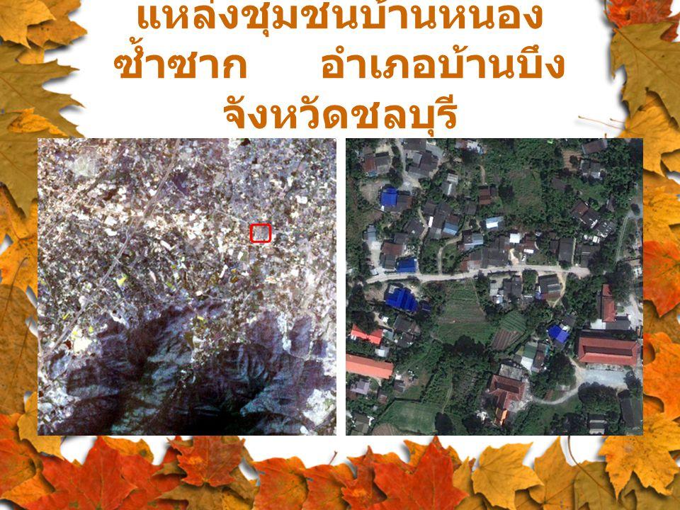 แหล่งชุมชนบ้านหนอง ซ้ำซาก อำเภอบ้านบึง จังหวัดชลบุรี
