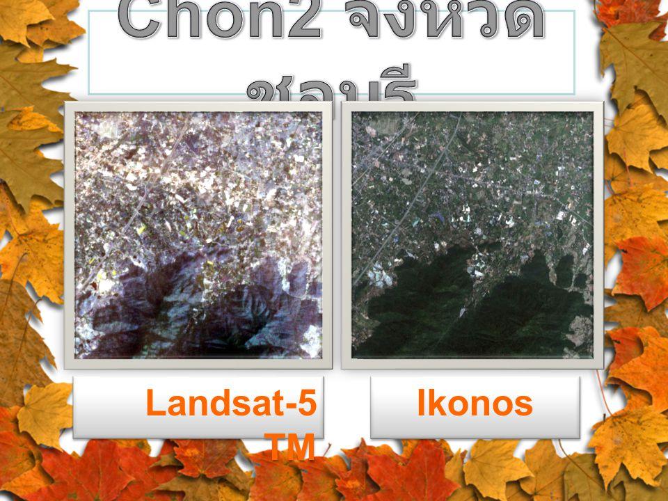 Landsat-5 TM Ikonos