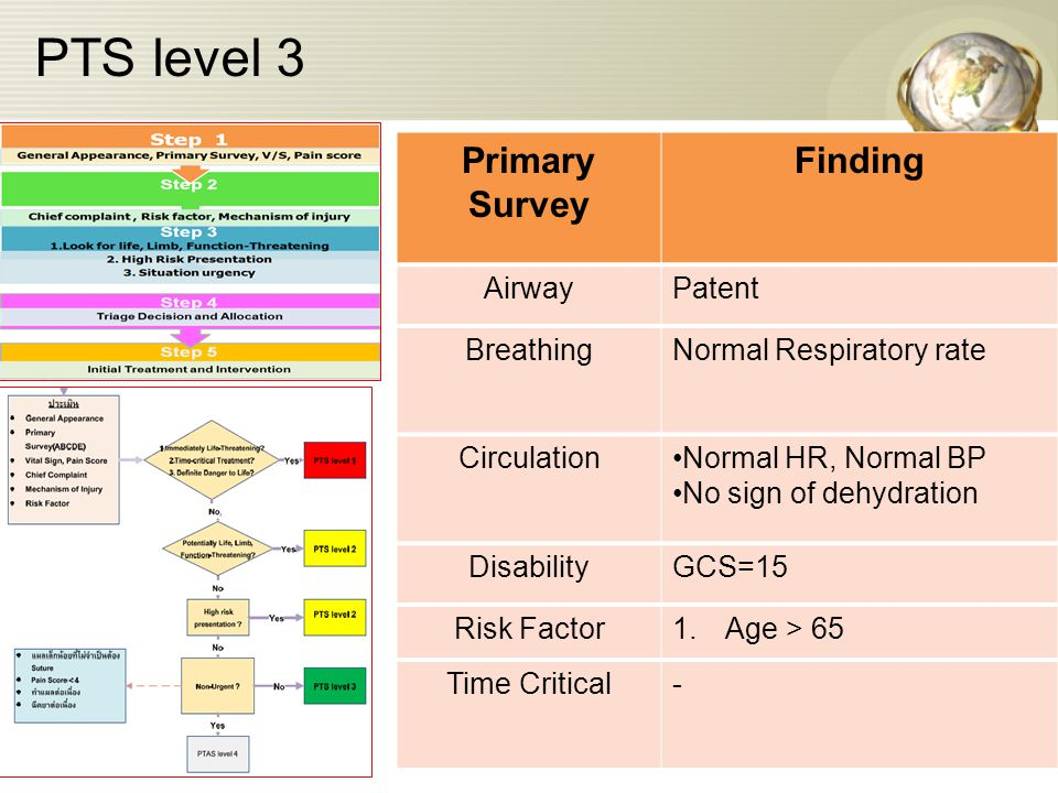PTS level 3 Primary Survey Finding AirwayPatent BreathingNormal Respiratory rate CirculationNormal HR, Normal BP No sign of dehydration DisabilityGCS=15 Risk Factor1.Age > 65 Time Critical-