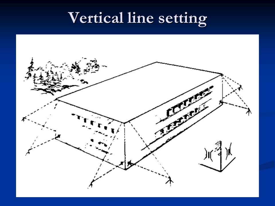 Vertical line setting