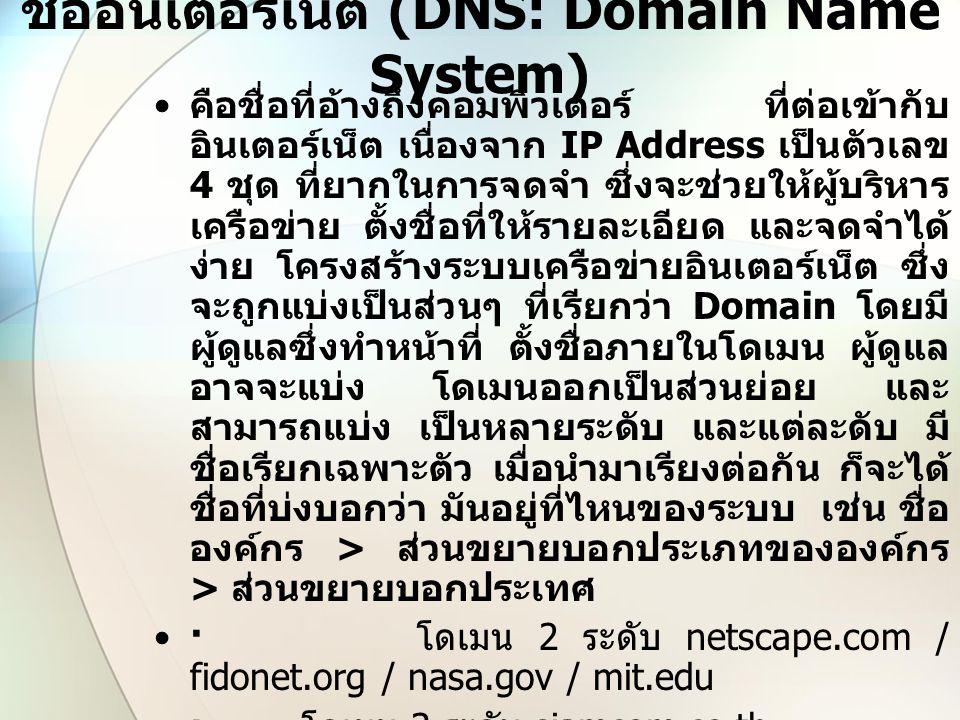 ชื่ออินเตอร์เน็ต (DNS: Domain Name System) คือชื่อที่อ้างถึงคอมพิวเตอร์ ที่ต่อเข้ากับ อินเตอร์เน็ต เนื่องจาก IP Address เป็นตัวเลข 4 ชุด ที่ยากในการจด