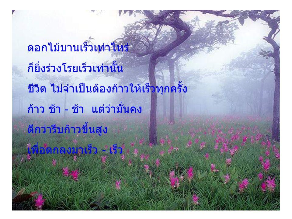 ดอกไม้บานเร็วเท่าไหร่ ก็ยิ่งร่วงโรยเร็วเท่านั้น ชีวิต ไม่จำเป็นต้องก้าวให้เร็วทุกครั้ง ก้าว ช้า - ช้า แต่ว่ามั่นคง ดีกว่ารีบก้าวขึ้นสูง เพื่อตกลงมาเร็