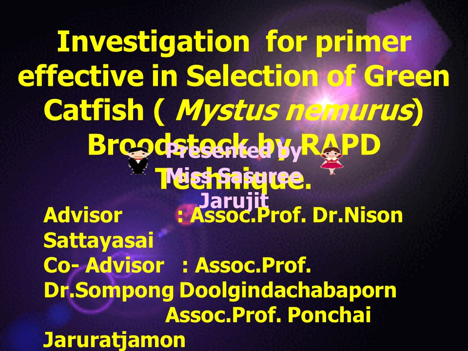 Investigation for primer effective in Selection of Green Catfish ( Mystus nemurus) Broodstock by RAPD Technique.