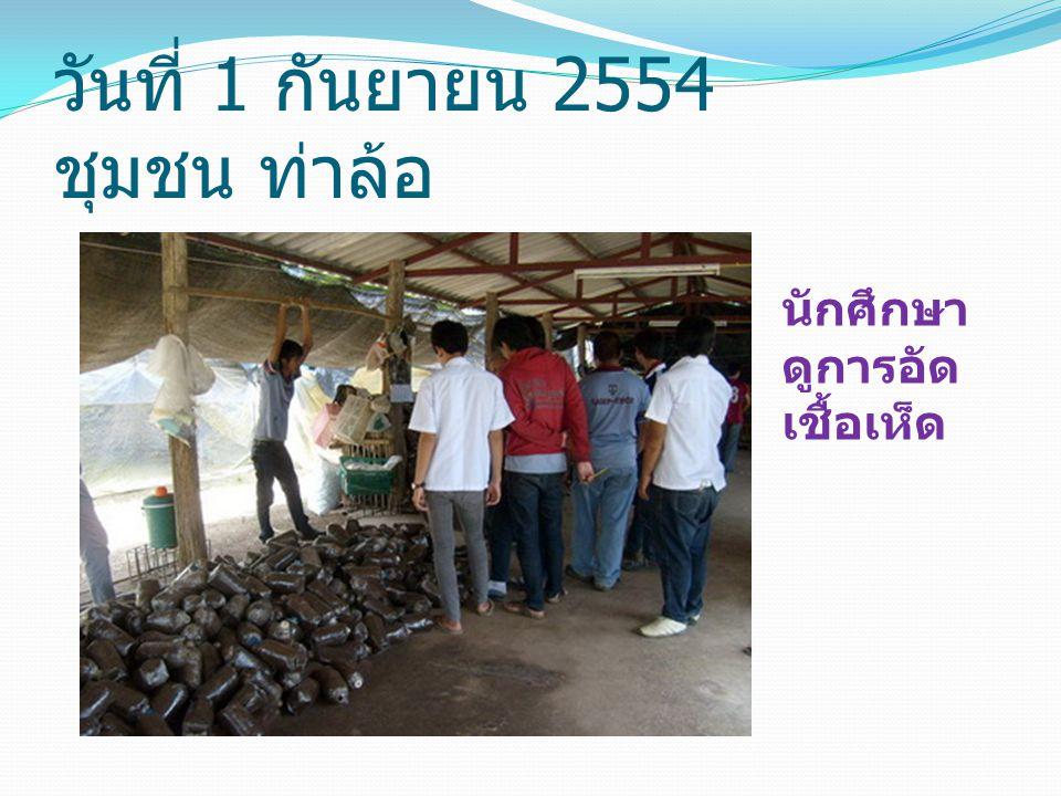 วันที่ 1 กันยายน 2554 ชุมชน ท่าล้อ นักศึกษา ดูการอัด เชื้อเห็ด