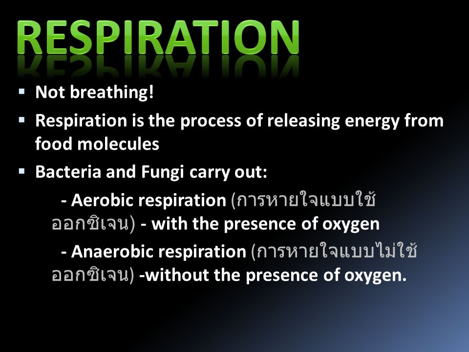  Glucose can be respired (used to provide energy) in a similar way to respiration in most other organisms: C 6 H 12 O 6 6O 2 6CO 2 6H 2 O Energy Glucose Oxygen Carbon dioxide Water +++ Cell