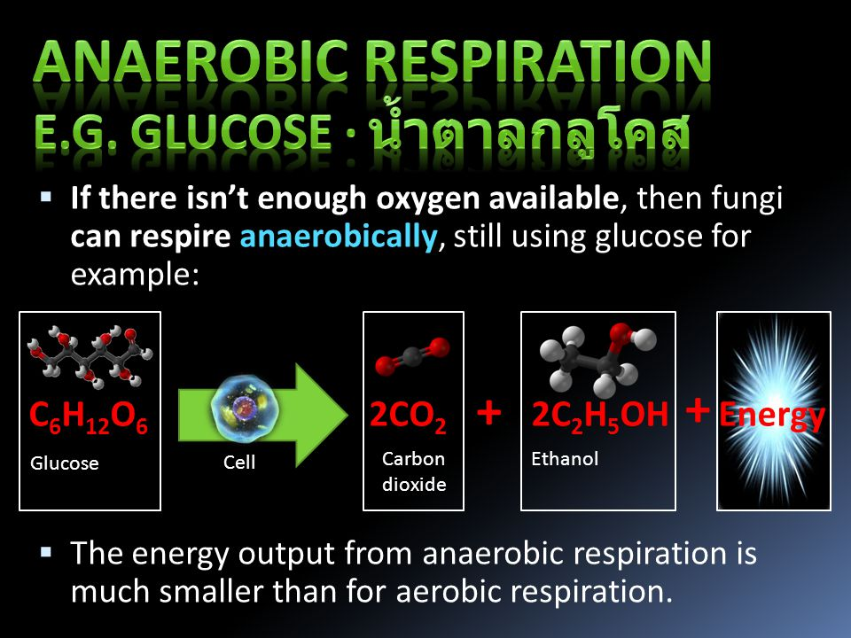  If there isn't enough oxygen available, then fungi can respire anaerobically, still using glucose for example:  The energy output from anaerobic respiration is much smaller than for aerobic respiration.
