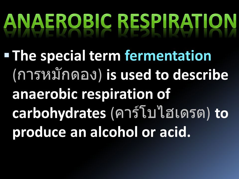  The special term fermentation ( การหมักดอง ) is used to describe anaerobic respiration of carbohydrates ( คาร์โบไฮเดรต ) to produce an alcohol or acid.