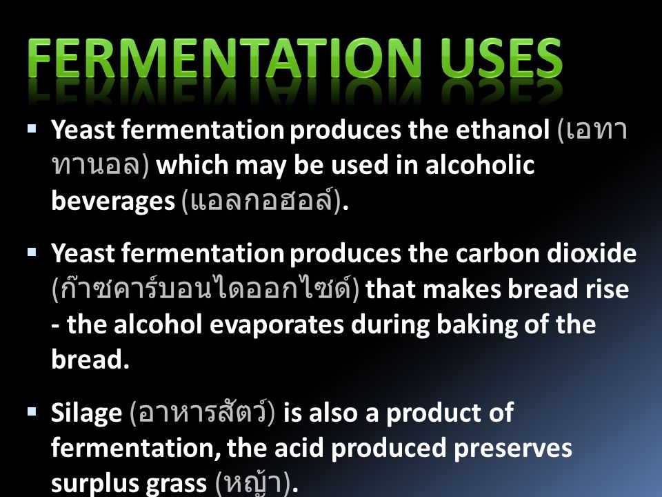 Yeast fermentation produces the ethanol ( เอทา นอล ) which may be used in alcoholic beverages ( แอลกอฮอล์ ).