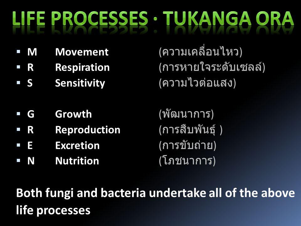  MMovement ( ความเคลื่อนไหว )  RRespiration ( การหายใจระดับเซลล์ )  SSensitivity ( ความไวต่อแสง )  GGrowth ( พัฒนาการ )  RReproduction ( การสืบพันธุ์ )  EExcretion ( การขับถ่าย )  NNutrition ( โภชนาการ ) Both fungi and bacteria undertake all of the above life processes