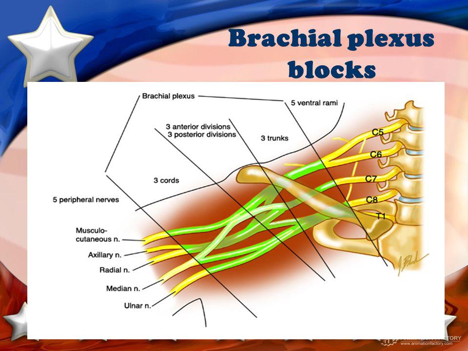 Brachial plexus blocks