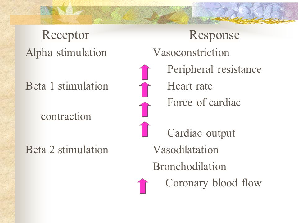 Receptor Response Alpha stimulationVasoconstriction Peripheral resistance Beta 1 stimulation Heart rate Force of cardiac contraction Cardiac output Be