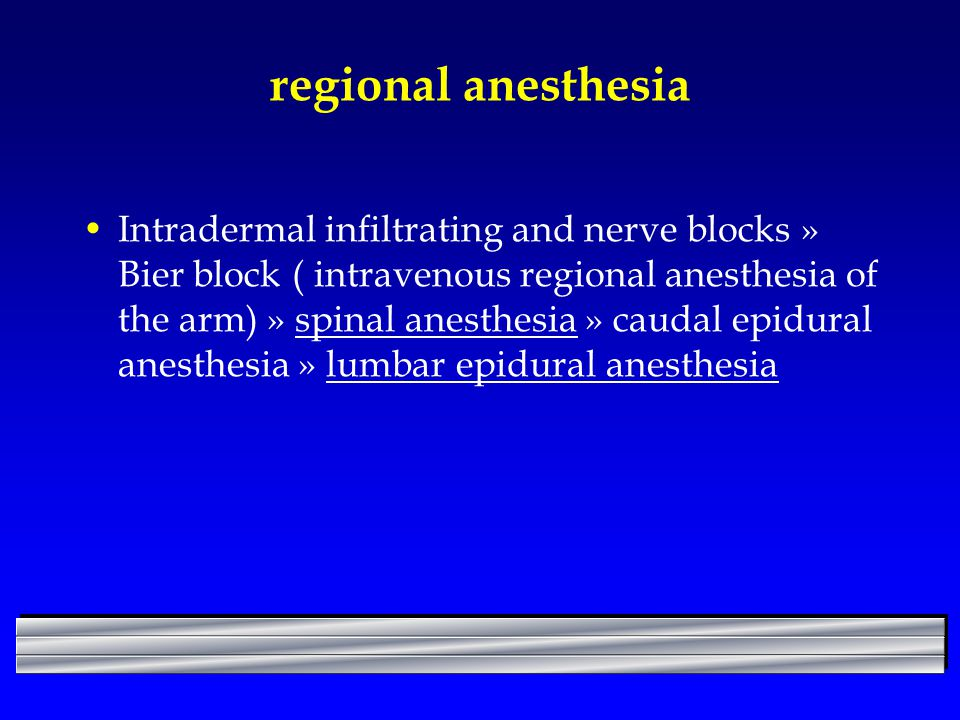 regional anesthesia Intradermal infiltrating and nerve blocks » Bier block ( intravenous regional anesthesia of the arm) » spinal anesthesia » caudal epidural anesthesia » lumbar epidural anesthesia