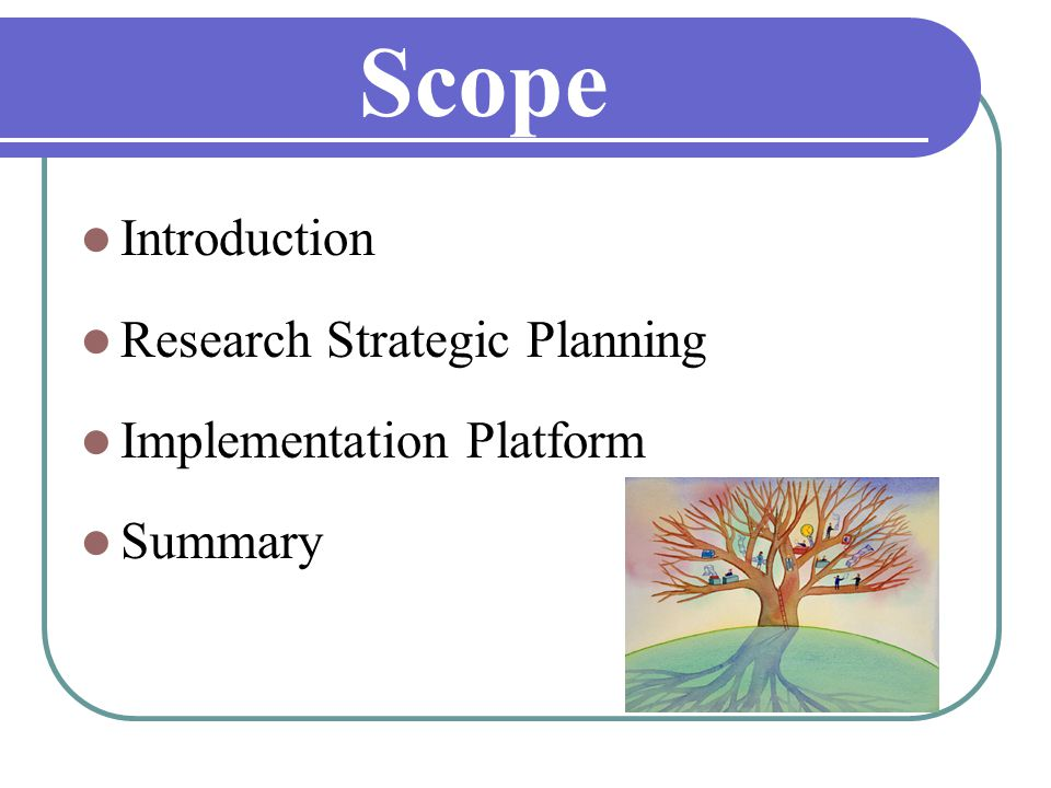 Scope Introduction Research Strategic Planning Implementation Platform Summary