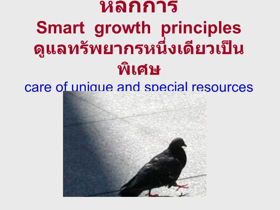 หลักการ Smart growth principles ดูแลทรัพยากรหนึ่งเดียวเป็น พิเศษ care of unique and special resources