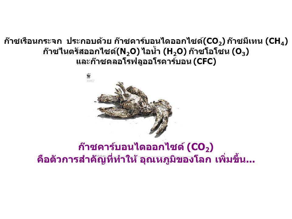 ก๊าซคาร์บอนไดออกไซด์ (CO 2 ) คือตัวการสำคัญที่ทำให้ อุณหภูมิของโลก เพิ่มขึ้น... ก๊าซเรือนกระจก ประกอบด้วย ก๊าซคาร์บอนไดออกไซด์(CO 2 ) ก๊าซมีเทน (CH 4