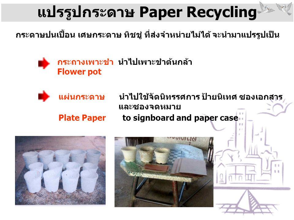 แปรรูปกระดาษ Paper Recycling กระดาษปนเปื้อน เศษกระดาษ ทิชชู่ ที่ส่งจำหน่ายไม่ได้ จะนำมาแปรรูปเป็น กระถางเพาะชำ นำไปเพาะชำต้นกล้า Flower pot แผ่นกระดาษ