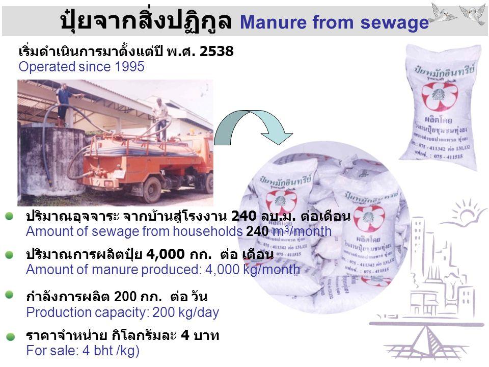 ปุ๋ยจากสิ่งปฏิกูล Manure from sewage ปริมาณอุจจาระ จากบ้านสู่โรงงาน 240 ลบ.ม. ต่อเดือน Amount of sewage from households 240 m 3 /month ปริมาณการผลิตปุ
