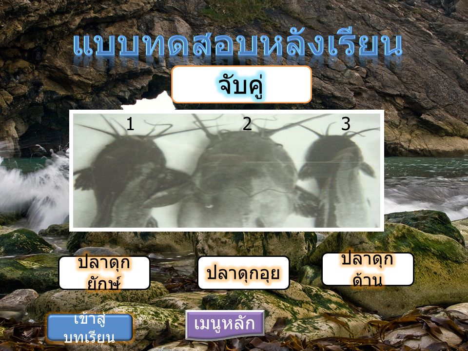เมนูหลัก ก ข 1. ปลาดุก ด้าน 2. ปลาดุก อุย เข้าสู่ บทเรียน