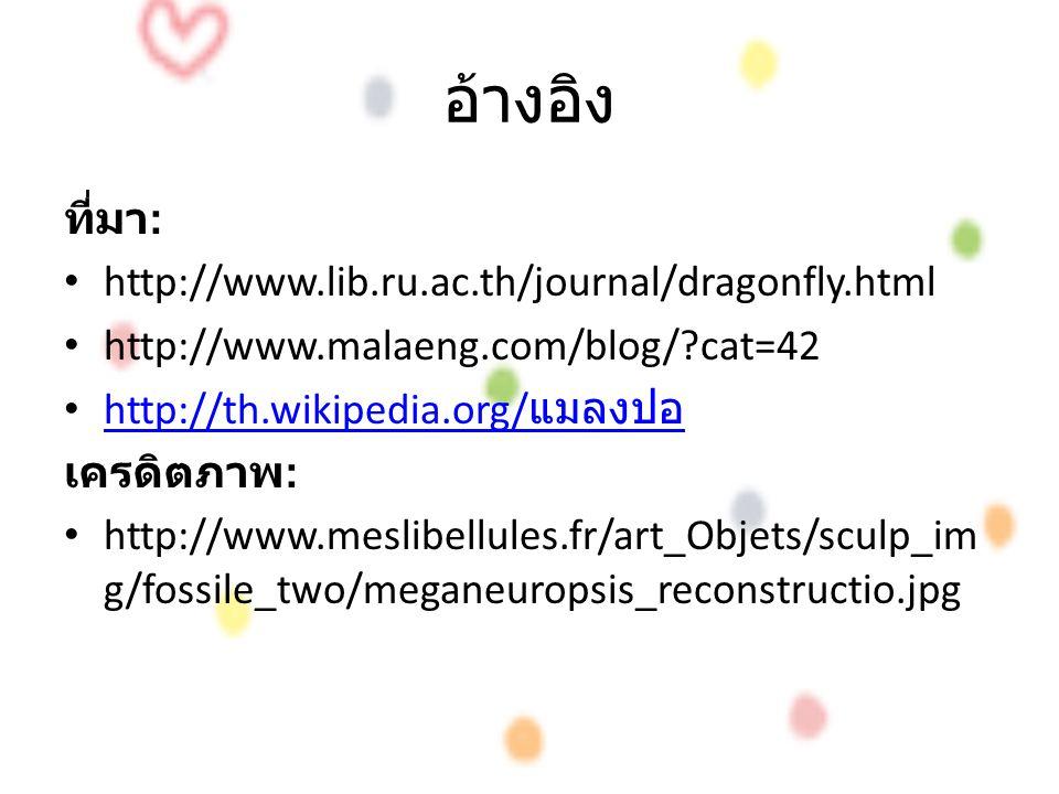 อ้างอิง ที่มา : http://www.lib.ru.ac.th/journal/dragonfly.html http://www.malaeng.com/blog/?cat=42 http://th.wikipedia.org/ แมลงปอ http://th.wikipedia.org/ แมลงปอ เครดิตภาพ : http://www.meslibellules.fr/art_Objets/sculp_im g/fossile_two/meganeuropsis_reconstructio.jpg