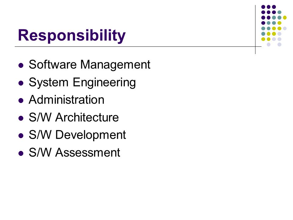 Responsibility Software Management System Engineering Administration S/W Architecture S/W Development S/W Assessment