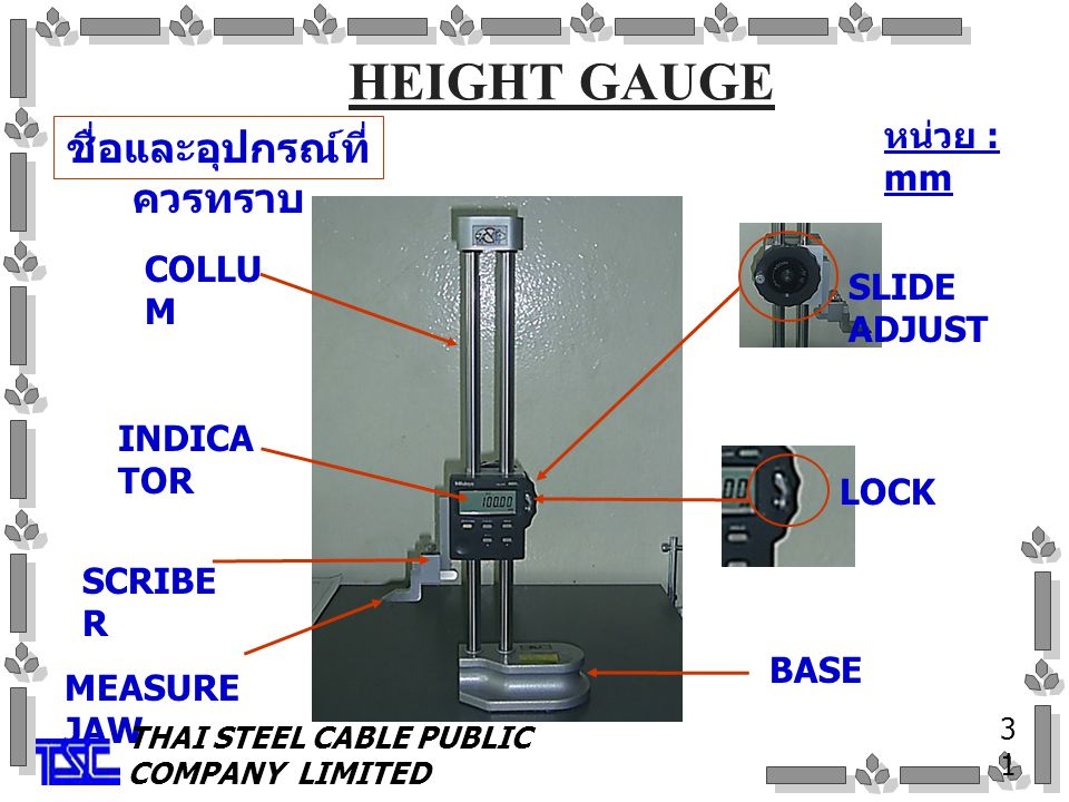 HEIGHT GAUGE ชื่อและอุปกรณ์ที่ ควรทราบ 3131 COLLU M SCRIBE R MEASURE JAW LOCK BASE SLIDE ADJUST INDICA TOR หน่วย : mm THAI STEEL CABLE PUBLIC COMPANY