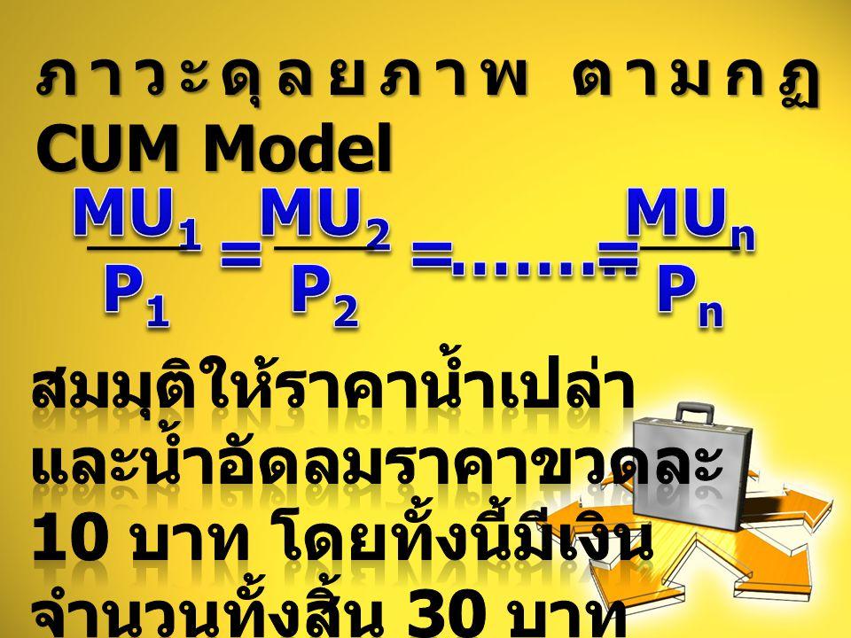 ภาวะดุลยภาพ ตามกฏ CUM Model